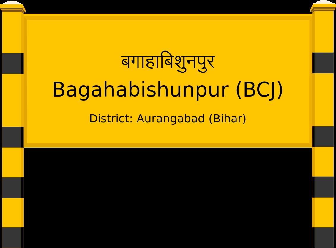 Bagahabishunpur (BCJ) Railway Station