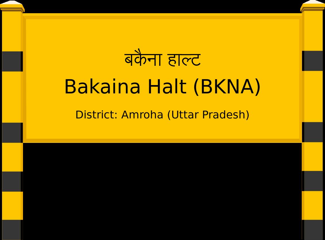 Bakaina Halt (BKNA) Railway Station