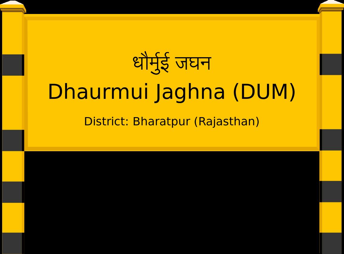 Dhaurmui Jaghna (DUM) Railway Station