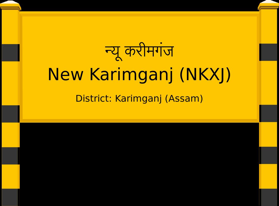 New Karimganj (NKXJ) Railway Station