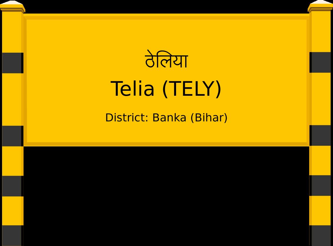 Telia (TELY) Railway Station