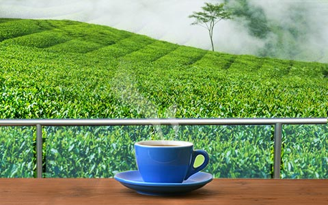 Message-board_monsoon-chai-trails