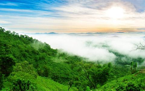 Message board jampui hills of tripura 1530684005