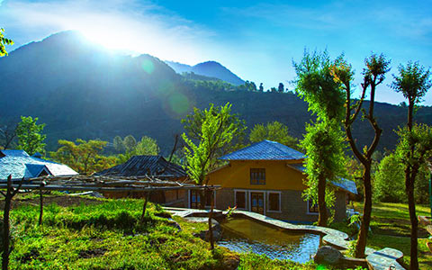 Message board tourist places in palampur 1546839204