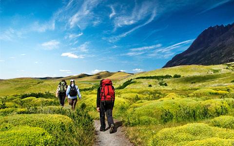Message board trekking in anthargange 1541053417