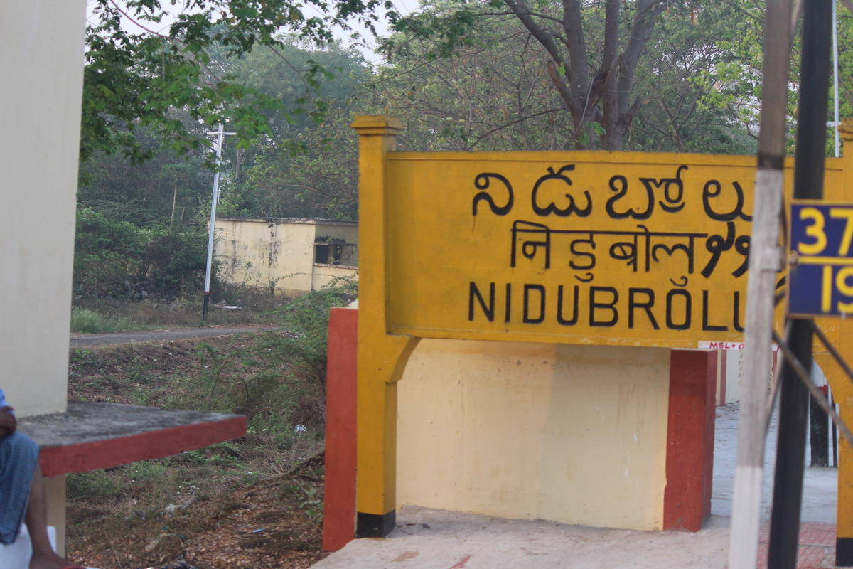 nidubrolu wisdom banner